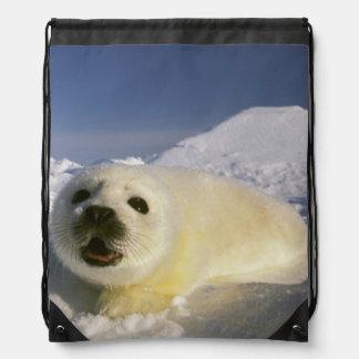 North America, Canada, Gulf of St. Lawrence. 5 Drawstring Bag