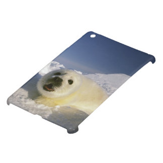 North America, Canada, Gulf of St. Lawrence. 5 Cover For The iPad Mini