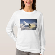 North America, Canada, Gulf of St. Lawrence. 5 T-Shirt