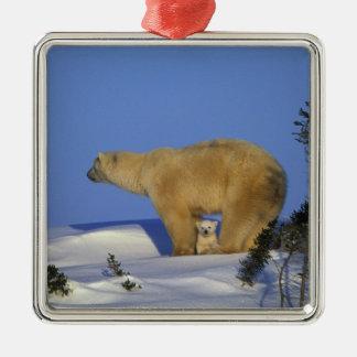 North America, Canada, Manitoba, Churchill. 10 Metal Ornament