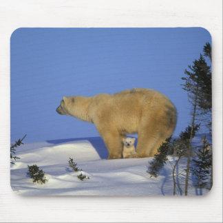 North America, Canada, Manitoba, Churchill. 10 Mouse Pad