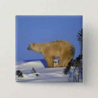 North America, Canada, Manitoba, Churchill. 10 Pinback Button