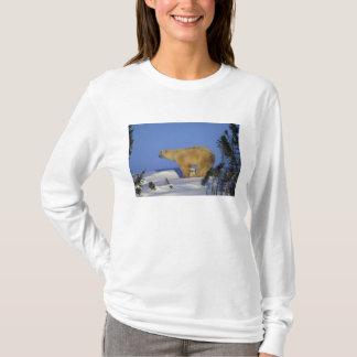North America, Canada, Manitoba, Churchill. 10 T-Shirt