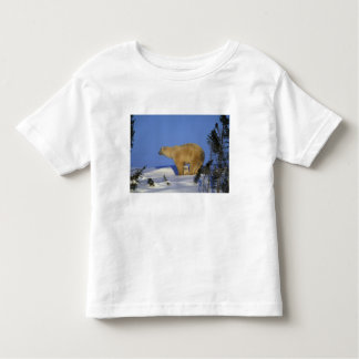 North America, Canada, Manitoba, Churchill. 10 Toddler T-shirt