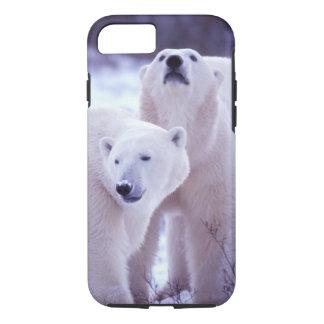 North America, Canada, Manitoba, Churchill. 2 iPhone 7 Case