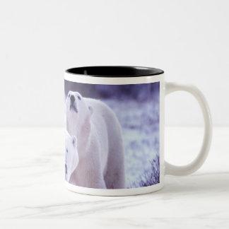 North America, Canada, Manitoba, Churchill. 2 Coffee Mug