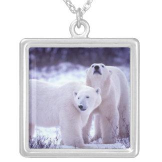 North America, Canada, Manitoba, Churchill. 2 Silver Plated Necklace