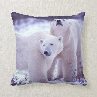 North America, Canada, Manitoba, Churchill. 2 Throw Pillow