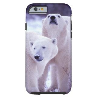 North America, Canada, Manitoba, Churchill. 2 Tough iPhone 6 Case