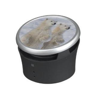 North America, Canada, Manitoba, Churchill. 5 Bluetooth Speaker