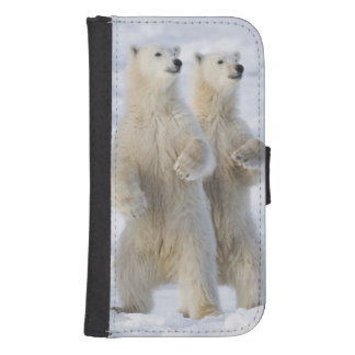 North America, Canada, Manitoba, Churchill. 5 Galaxy S4 Wallet Cases