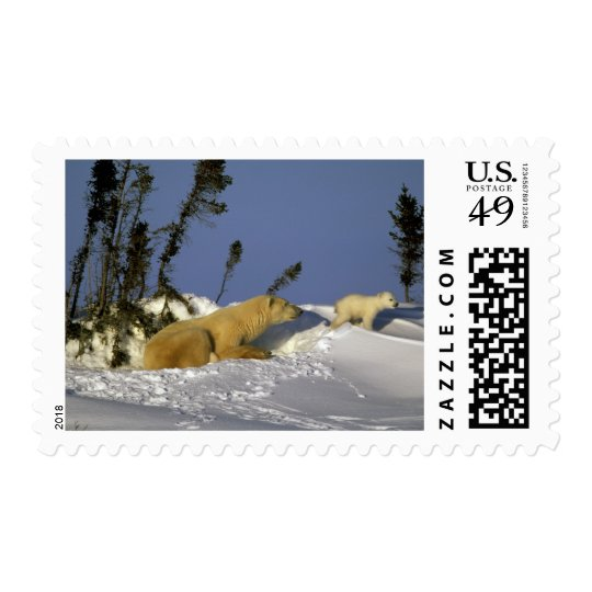 North America, Canada, Manitoba, Churchill. 5 Postage