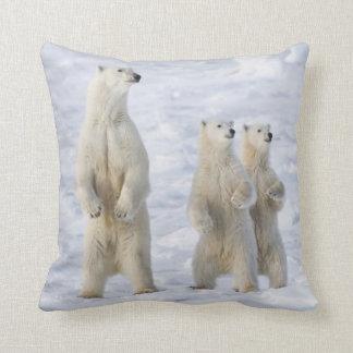 North America, Canada, Manitoba, Churchill. 5 Throw Pillow