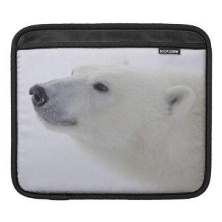 North America, Canada, Manitoba, Churchill. 6 iPad Sleeve