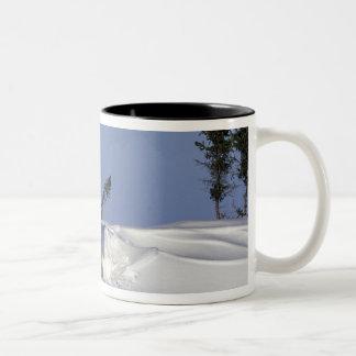 North America, Canada, Manitoba, Churchill. 7 Coffee Mug