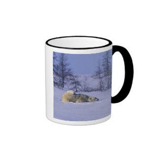 North America, Canada, Manitoba, Churchill. 8 Coffee Mug