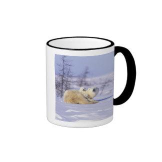 North America, Canada, Manitoba, Churchill. 9 Coffee Mugs