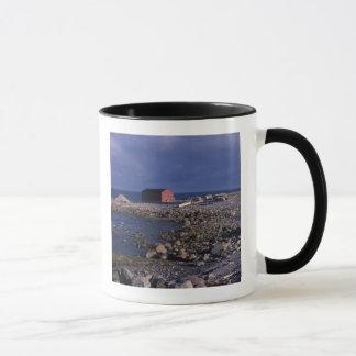 North America, Canada, Newfoundland, Gros Morne Mug