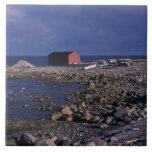 North America, Canada, Newfoundland, Gros Morne Large Square Tile