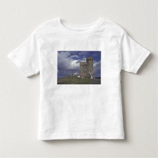 North America, Canada, Newfoundland, St. John's. Toddler T-shirt