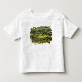 North America, Canada, Nova Scotia, Annapolis Toddler T-shirt