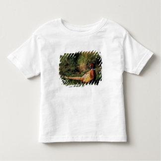 North America, Canada, Nova Scotia, Eastern 2 Toddler T-shirt