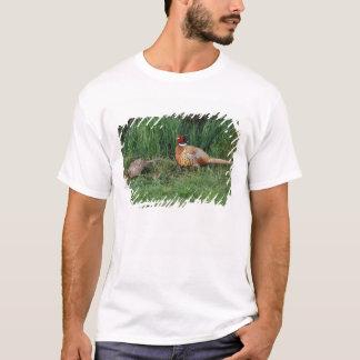 North America, Canada, Nova Scotia, Eastern 3 T-Shirt