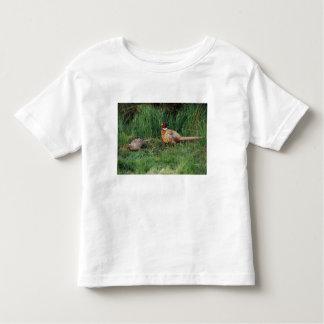 North America, Canada, Nova Scotia, Eastern 3 Toddler T-shirt