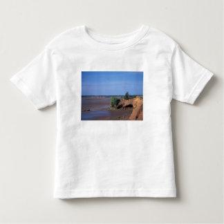North America, Canada, Nova Scotia, Economy, Bay Toddler T-shirt