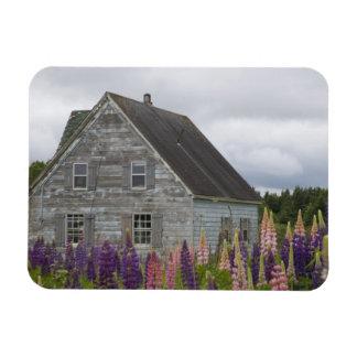 North America Canada Prince Edward Island Vinyl Magnet