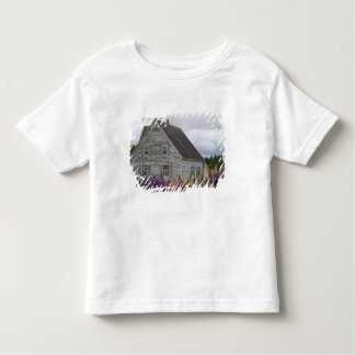 North America, Canada, Prince Edward Island, Toddler T-shirt