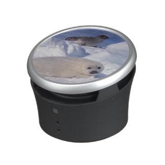 North America, Canada, Quebec, Iles de la 2 Bluetooth Speaker