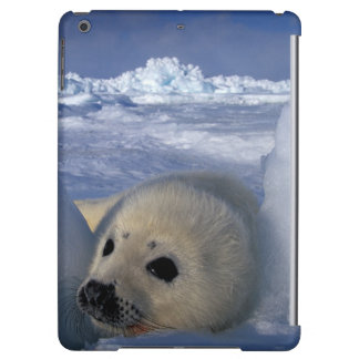 North America, Canada, Quebec, Iles de la 2 iPad Air Case