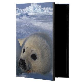 North America, Canada, Quebec, Iles de la 2 iPad Air Cover