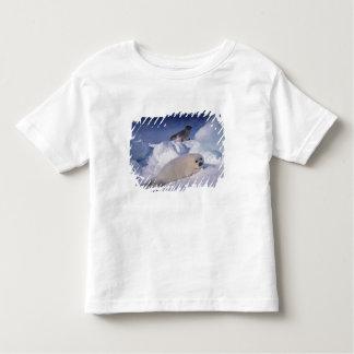 North America, Canada, Quebec, Iles de la 2 Toddler T-shirt