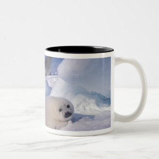 North America, Canada, Quebec, Iles de la 2 Two-Tone Coffee Mug