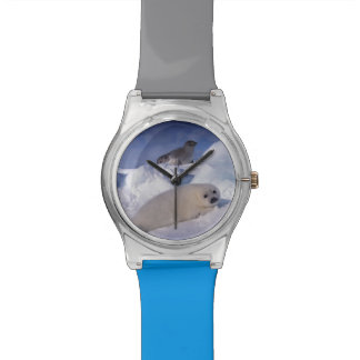 North America, Canada, Quebec, Iles de la 2 Watch