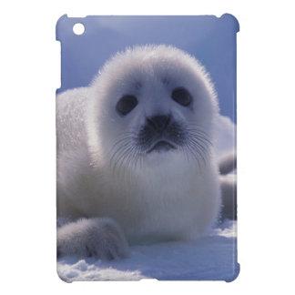 North America, Canada, Quebec, Iles de la iPad Mini Cases
