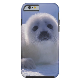 North America, Canada, Quebec, Iles de la iPhone 6 Case