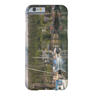 North America, Canada, Queen Charlotte Islands, 4 Barely There iPhone 6 Case