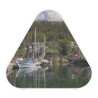 North America, Canada, Queen Charlotte Islands, 4 Bluetooth Speaker