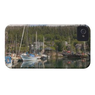 North America, Canada, Queen Charlotte Islands, 4 iPhone 4 Case