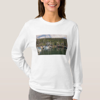 North America, Canada, Queen Charlotte Islands, 4 T-Shirt