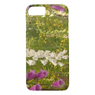 North America, Canada, Queen Charlotte Islands, 5 iPhone 7 Case