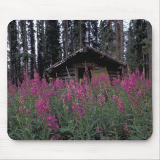 North America, Canada, Yukon. Abandoned trappers Mouse Pad