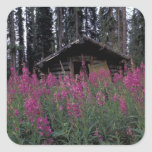 North America, Canada, Yukon. Abandoned trappers Square Sticker