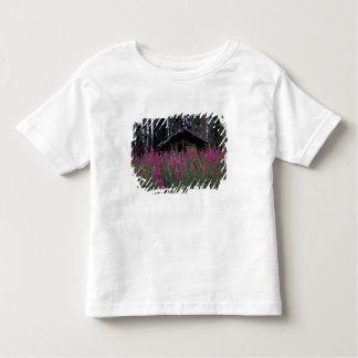 North America, Canada, Yukon. Abandoned trappers Toddler T-shirt