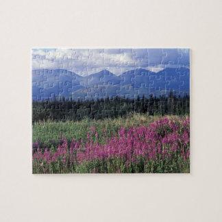 North America, Canada, Yukon. Fireweed blooms Jigsaw Puzzle