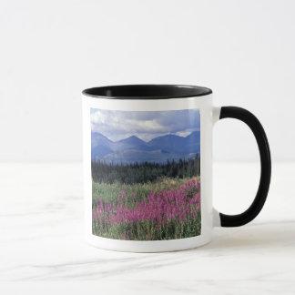 North America, Canada, Yukon. Fireweed blooms Mug