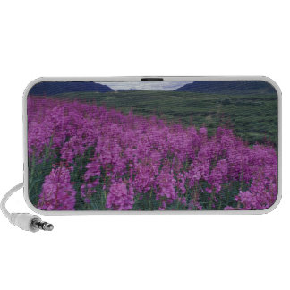 North America, Canada, Yukon. Fireweed blooms Portable Speaker